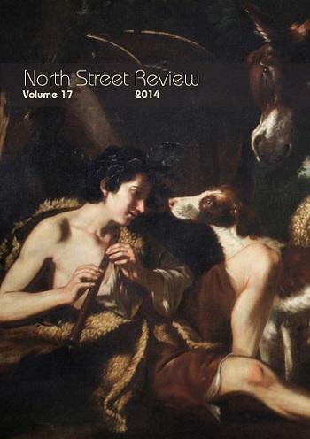 NSR Vol17 2014 cover